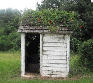 This outhouse at Purdue Hill, Alabama, is similar to the girls' outhouse at Barnum Hill School.